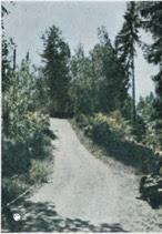 Øvreveien